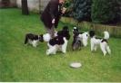 Pudeltreffen 2001