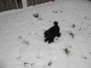 Spass im Schnee_1