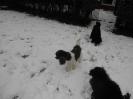 Spass im Schnee_2