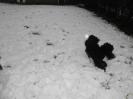 Spass im Schnee_4