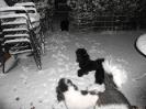 Von einer sekunde zur anderen Schnee_1