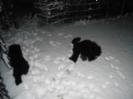 Von einer sekunde zur anderen Schnee_2