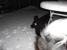 Von einer sekunde zur anderen Schnee_3