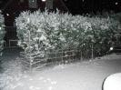 Von einer sekunde zur anderen Schnee_4
