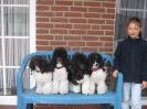 Amanda (Mandy) hat uns mit Ihrer Familie Ostern 2007 besucht